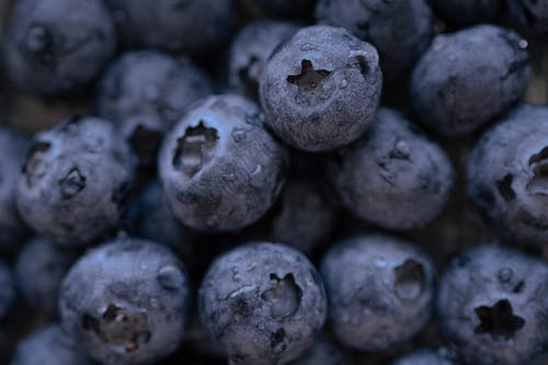 Pile of ripe blueberries with droplets
