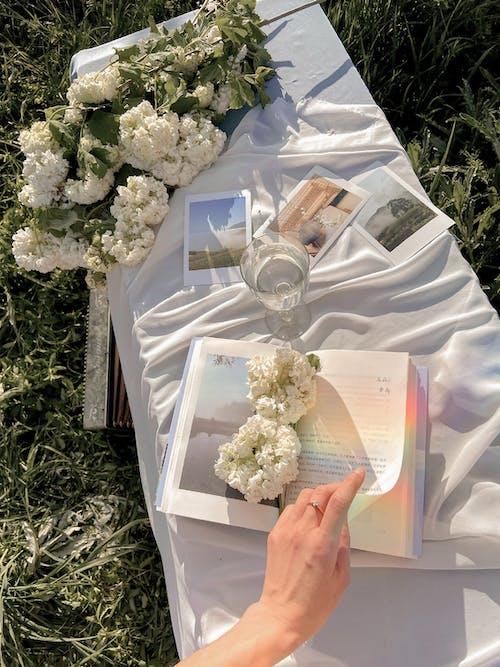 Kadın çim üzerinde Kitap Okuma