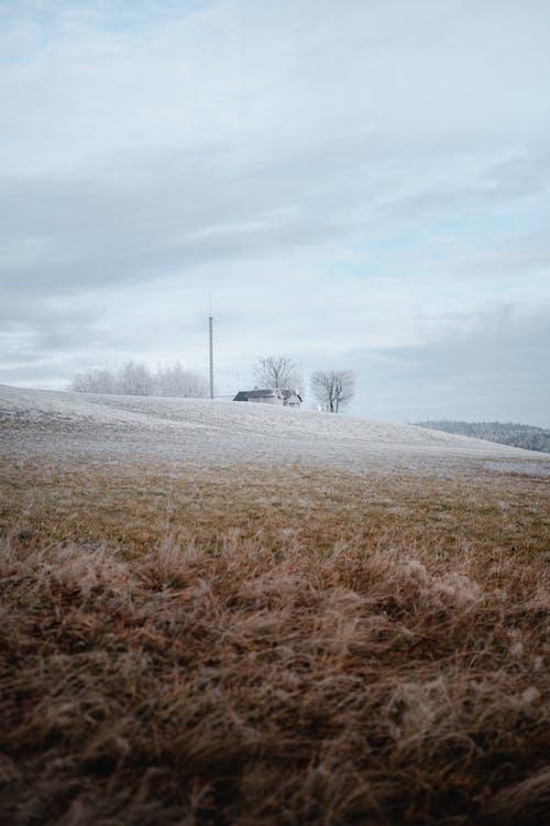Бесплатное стоковое фото с буря, вершина холма, ветер, за городом