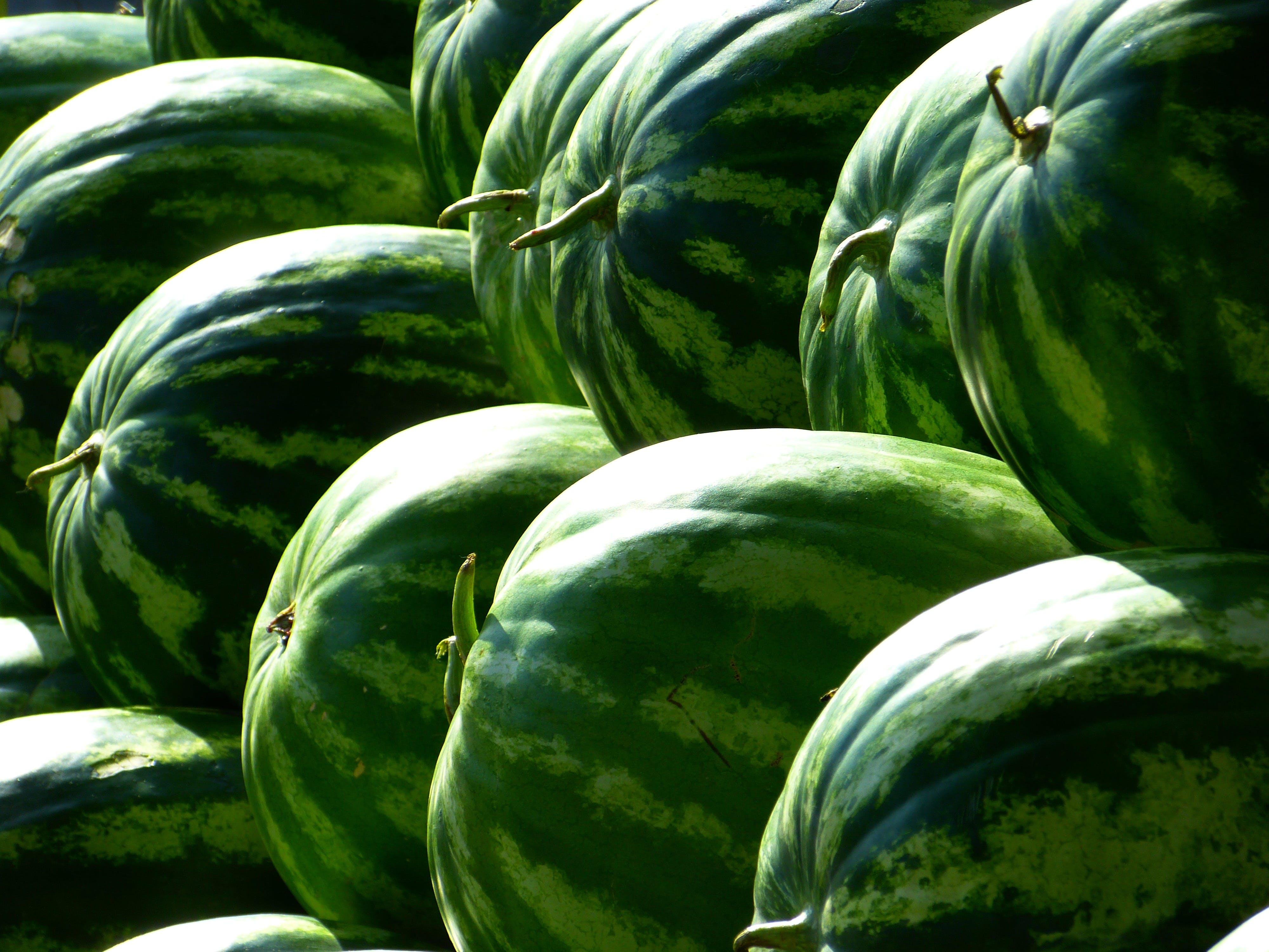 Foto profissional grátis de alimento, ecológico, frutas, melancias