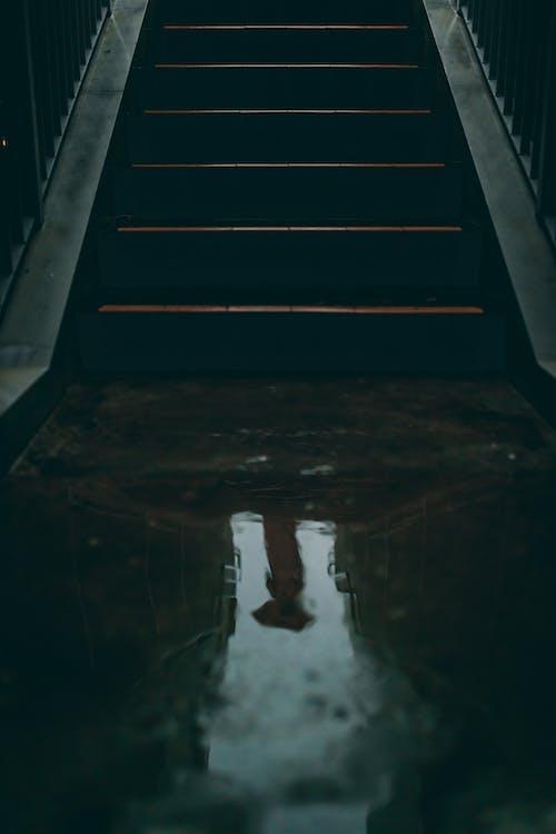 Foto stok gratis air, anak tangga, aqua