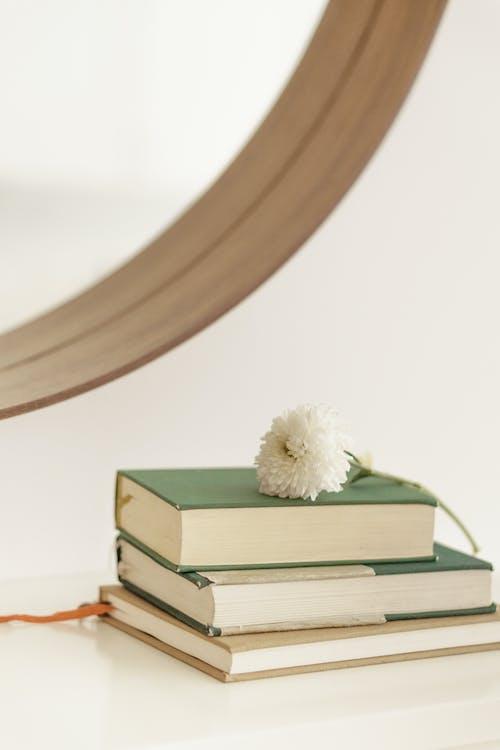 Chrysanthemum on pile of books on table