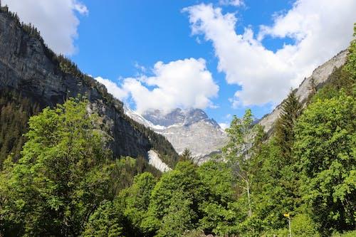 Ilmainen kuvapankkikuva tunnisteilla alkukantainen, Alpit, barbaari