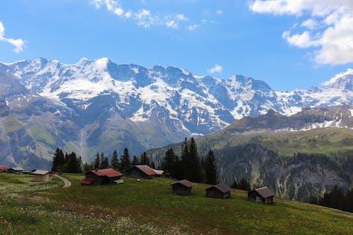 Ilmainen kuvapankkikuva tunnisteilla Alpit, jyrkänne, kivet