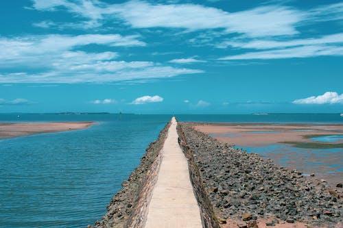 Immagine gratuita di acqua, alba, australia, estate