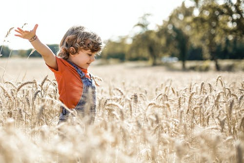 Boy in Red Shirt Standing on Brown Grass Field