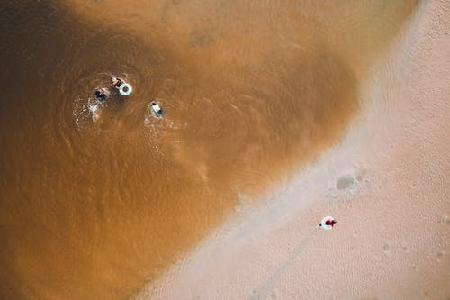 Aerial view of unrecognizable tourists with lifesavers swimming in waving ocean near sandy coast during summer holidays