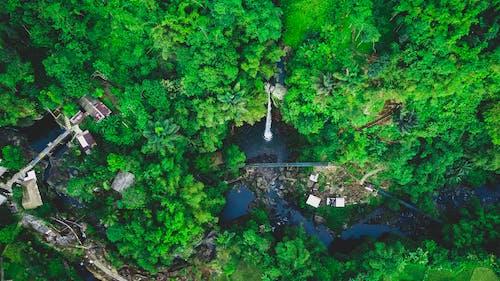 Fotos de stock gratuitas de abstracto, agua, al aire libre, amante de la naturaleza