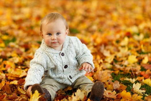 Infant in Gray 3 Button Up Long Sleeve Shirt Sitting on Brown leaves