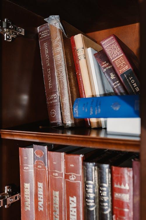 Immagine gratuita di biblioteca, business, chumash, conoscenza