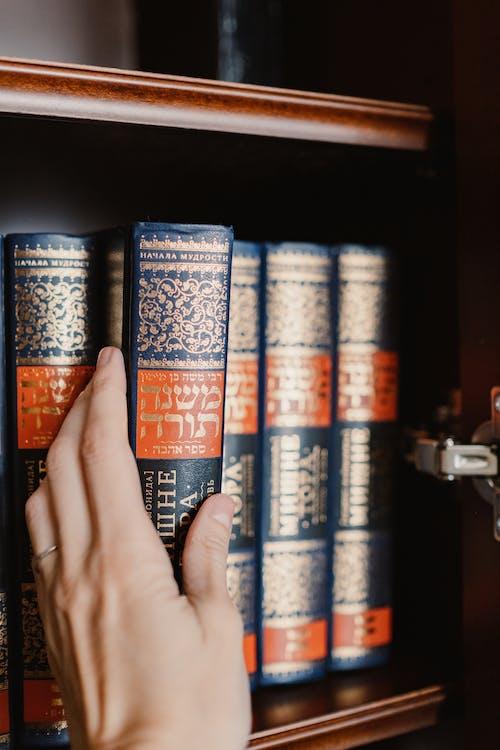 Immagine gratuita di biblioteca, birra, business, carta
