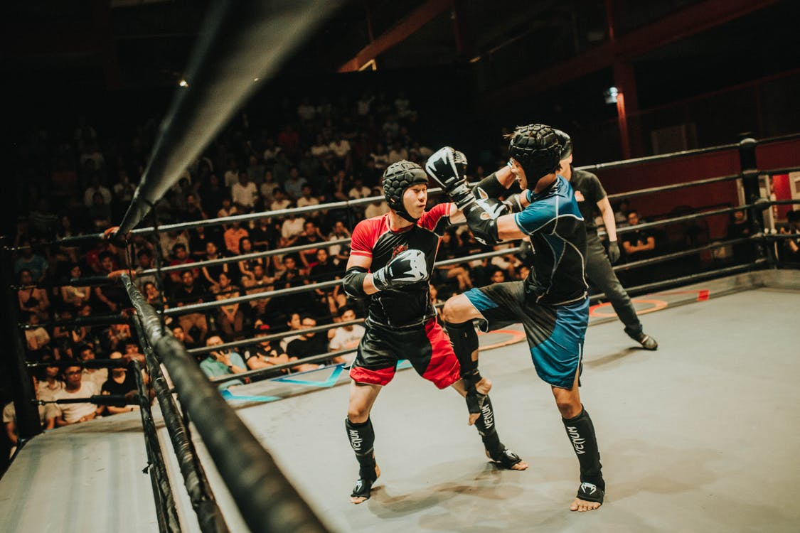 Blue and Red Kick Boxing in Ring