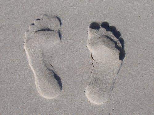 Photos gratuites de empreintes de pas, sable