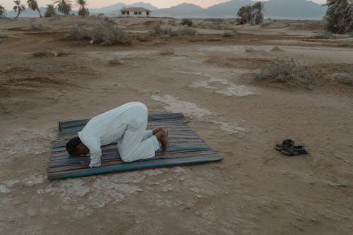 Foto stok gratis adat istiadat, agama, air, alami