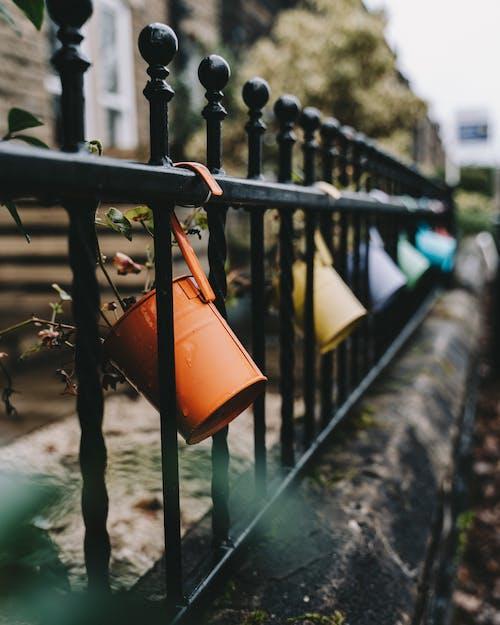 Immagine gratuita di acqua, architettura, autunno, bambino