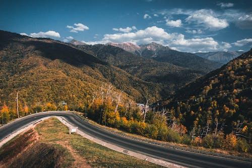Asphalt roadway among green lush hills