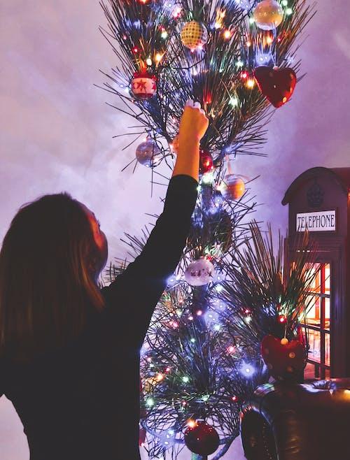 Kostnadsfri bild av jul, julgran, julstämning, ljusa ljus