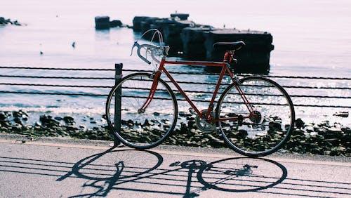 Immagine gratuita di acqua, bagnasciuga, bicicletta, giorno
