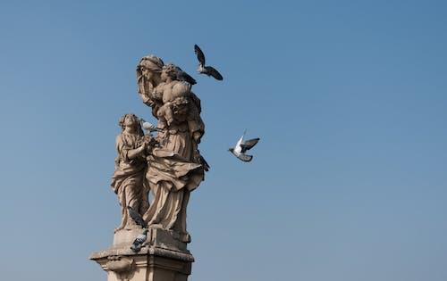 不朽的雕塑, 石, 紀念碑, 藝術 的 免费素材照片