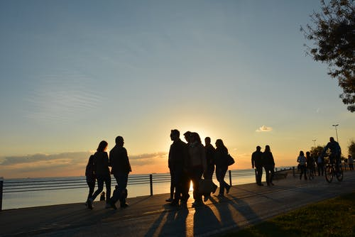 Silhouette of People Near Seashore during Sunset