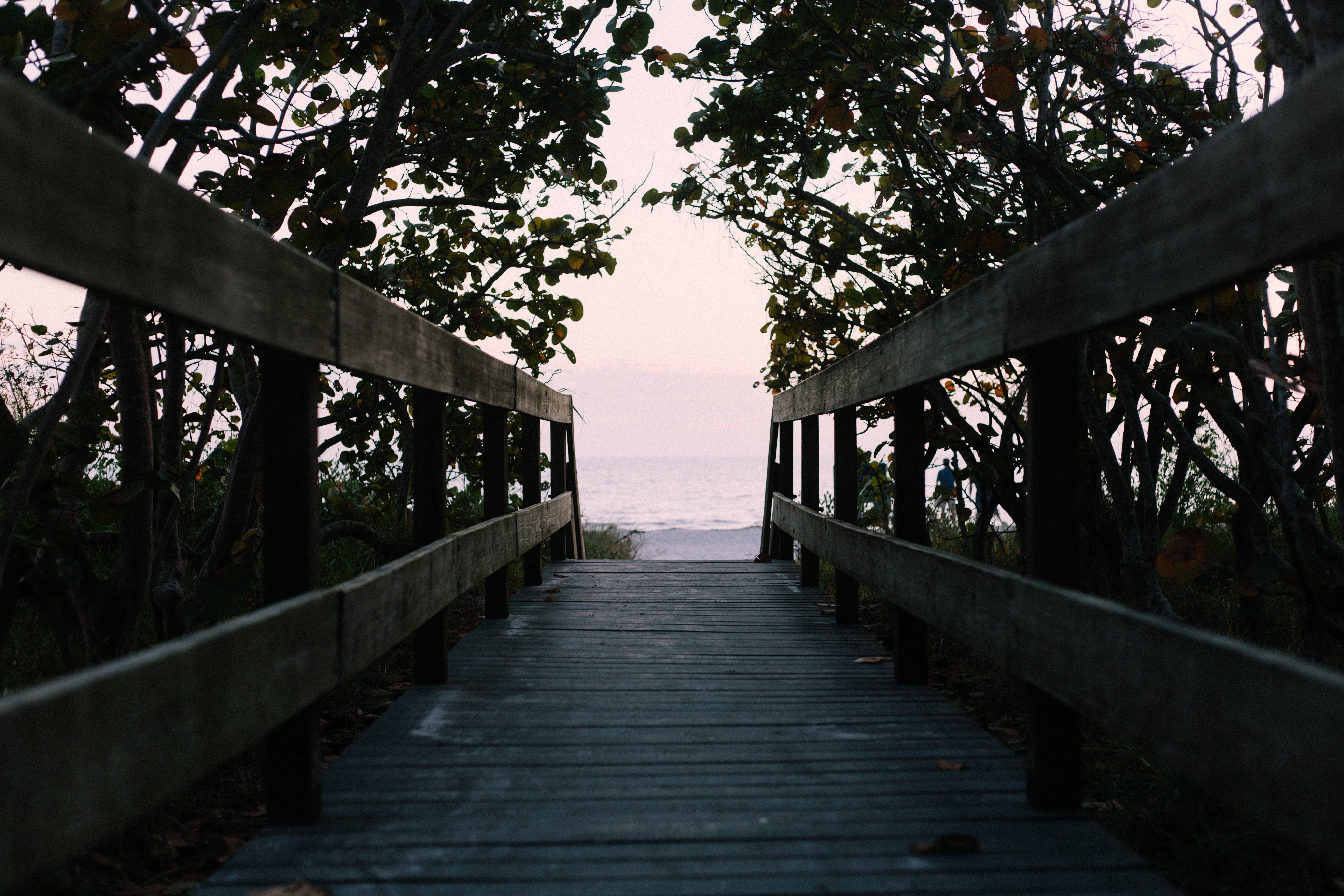 Empty Brown Wooden Bridge