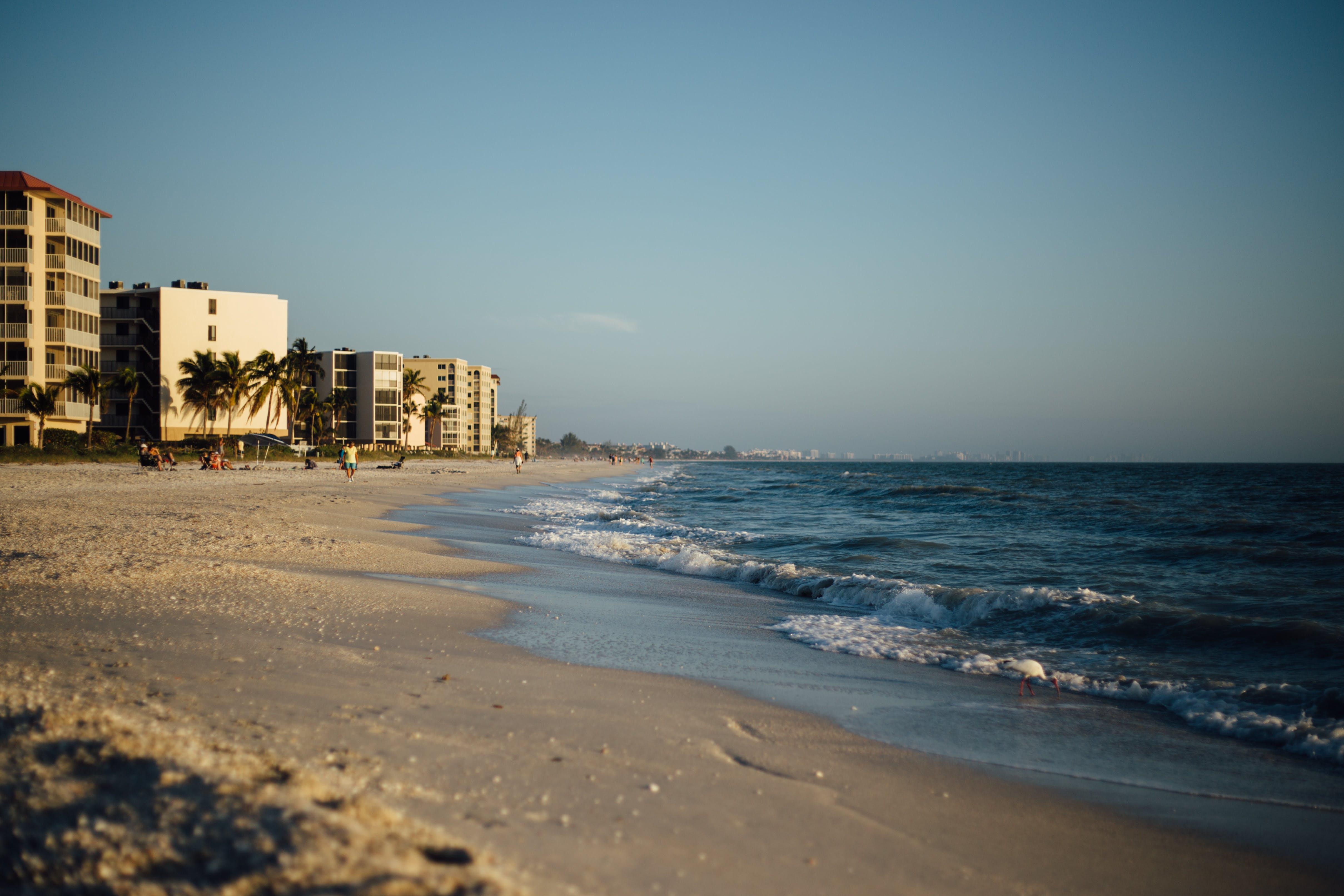 beach, city, ocean
