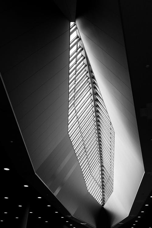 Black and white of contemporary structure with futuristic design of ceiling in downtown