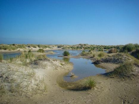 Free stock photo of landscape, nature, dunes, dutch