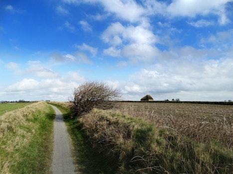 Free stock photo of landscape, nature, Texel, Texelpics