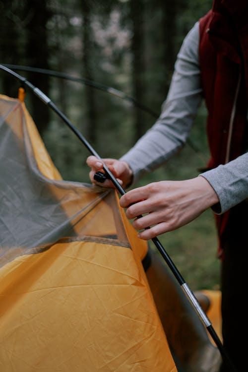 Gratis stockfoto met Bos, campeerplek, camping