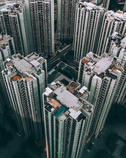 คลังภาพถ่ายฟรี ของ เมือง