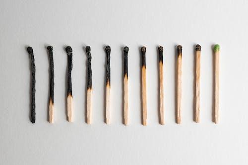 Foto stok gratis alat, api, api unggun