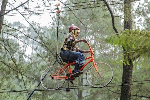 Ảnh lưu trữ miễn phí về bánh xe, cây, cuộc phiêu lưu