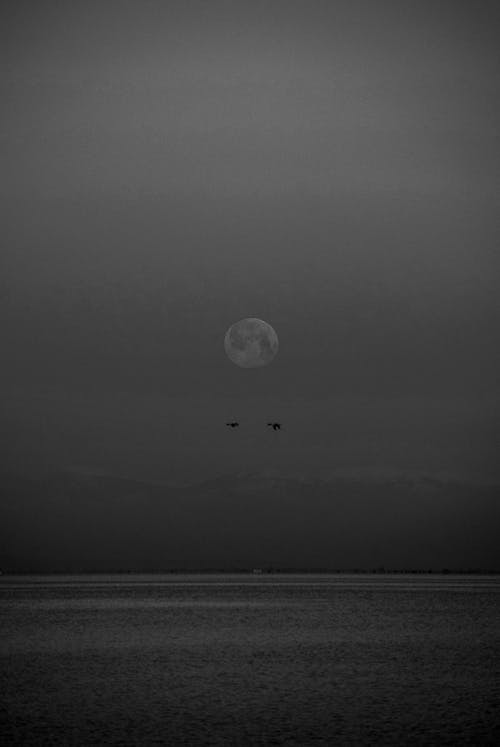 Grayscale Photography of Full Moon Over the Sea