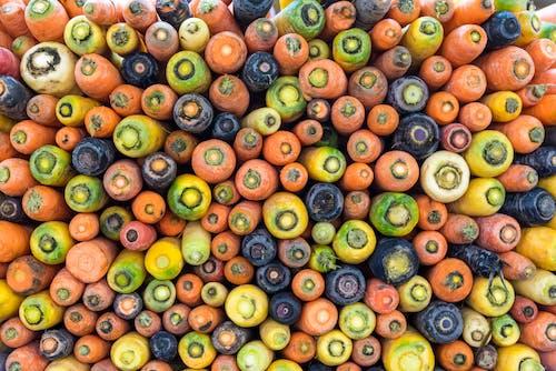 Free stock photo of carrots