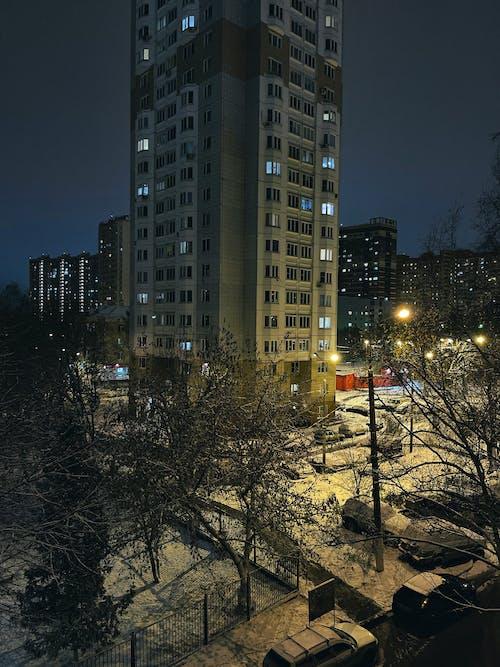 光, 光線, 公園, 冬季 的 免費圖庫相片