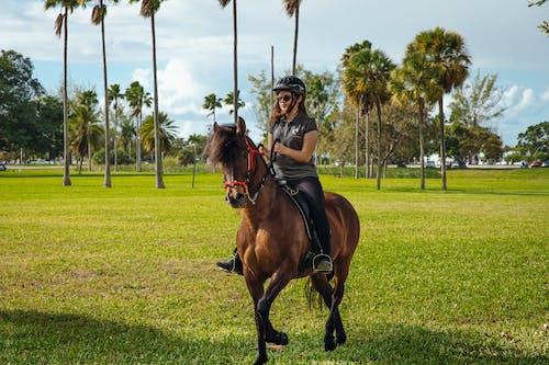 Man Riding Brown Horse on Green Grass Field