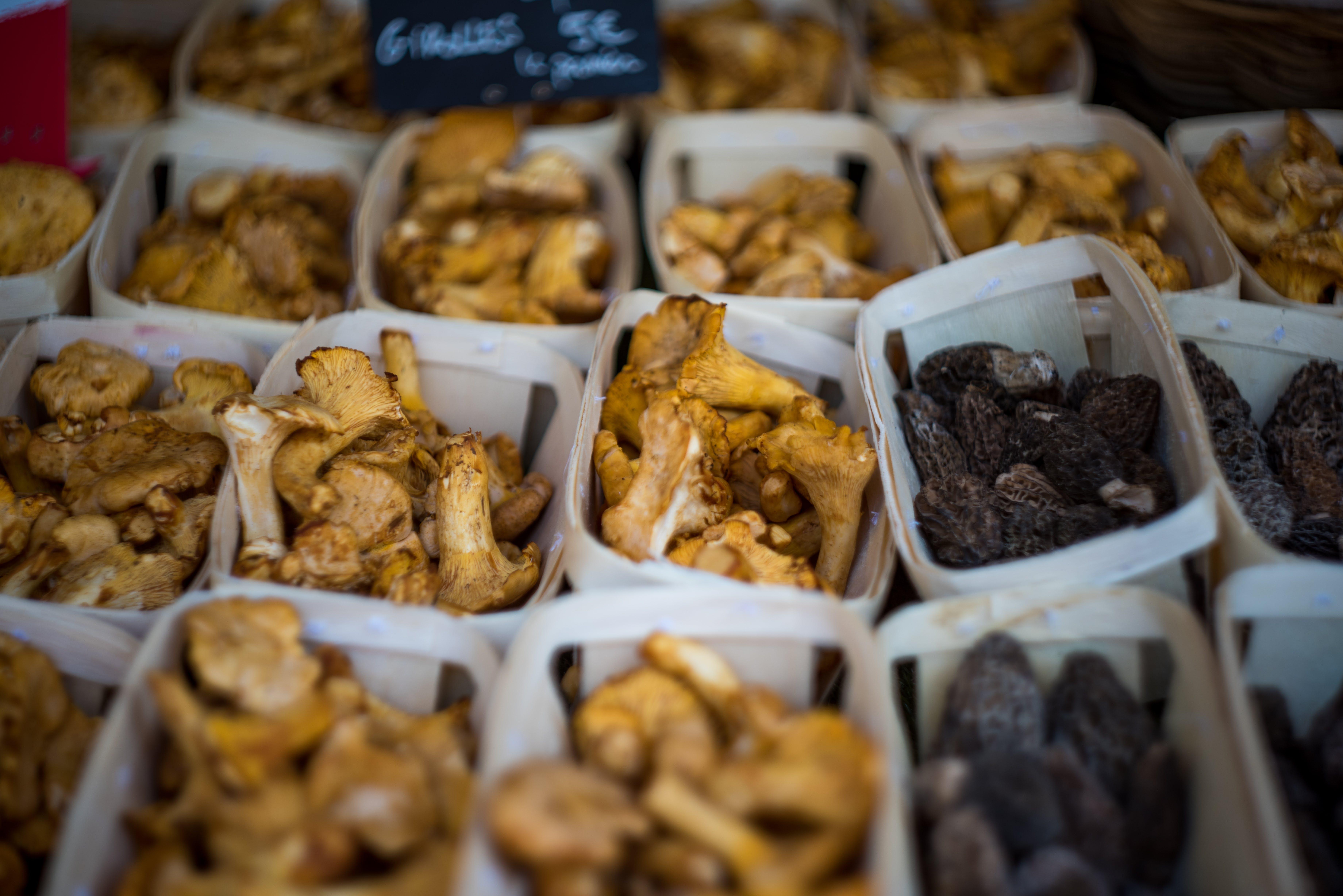 Free stock photo of farmers market, food, market, mushrooms