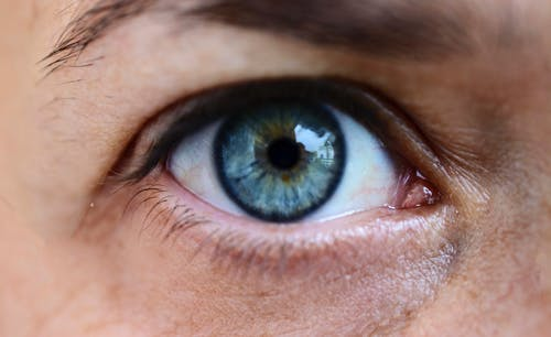 Gratis stockfoto met blauw oog, close-up, detailopname