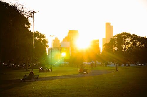 Photos gratuites de Argentine, bruno scramgnon fotografia, buenos aires, floralis generica