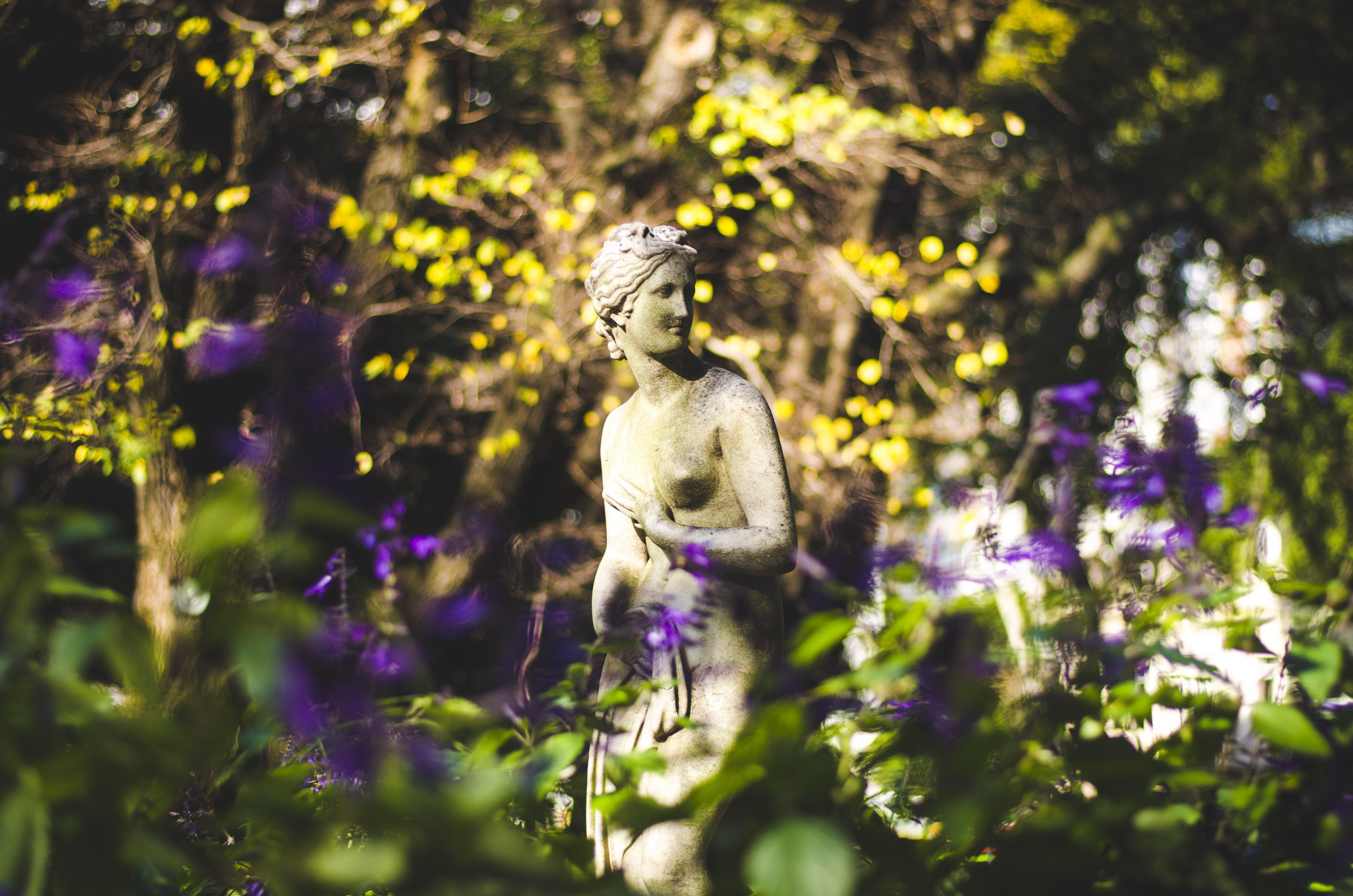 Free stock photo of landscape, nature, statue, warm