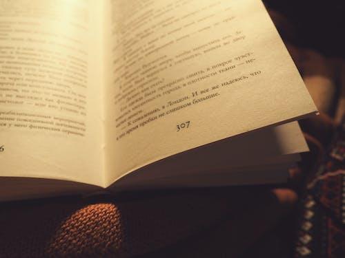 307, 圖書, 愛, 故事 的 免費圖庫相片
