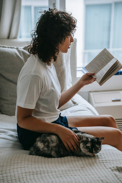 Side view attractive young female reading book and stroking hairy friendly cat while sitting on soft bed in stylish bedroom