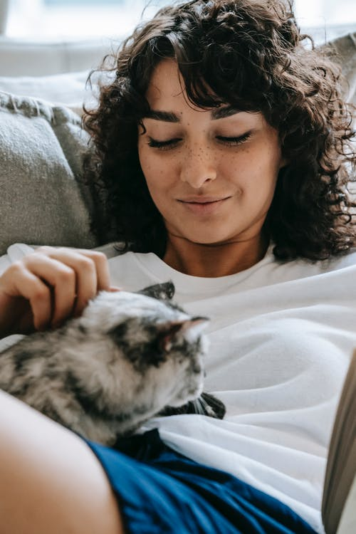 Cute cat lying on attractive woman belly on bed