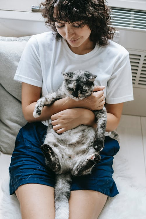 Relaxed woman stroking fluffy cat