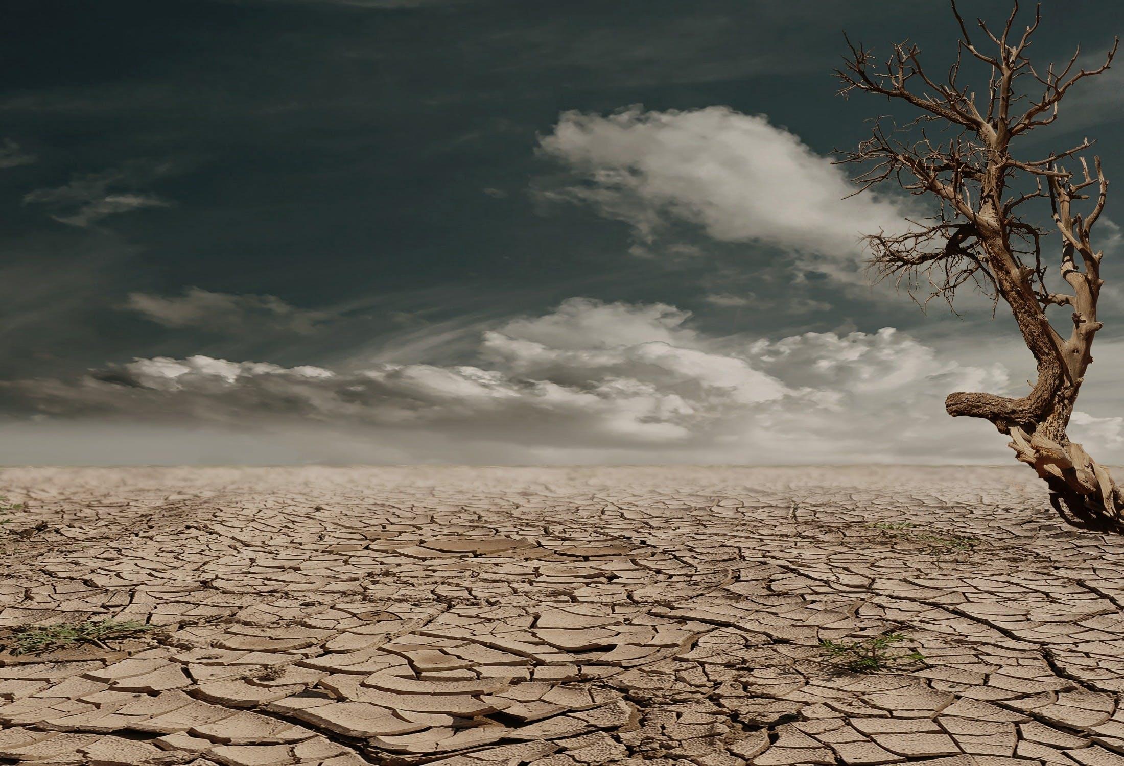 Foto stok gratis awan, gersang, gurun pasir, kekeringan
