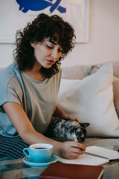 Concentrated young female writer with curly hair in casual clothes stroking cat and taking notes in diary while creating new book sitting on sofa at home
