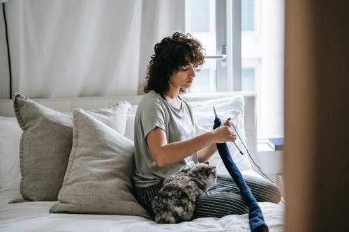 Adorable cat sitting on legs of concentrated young ethnic female owner with curly hair knitting on bed during weekend at home