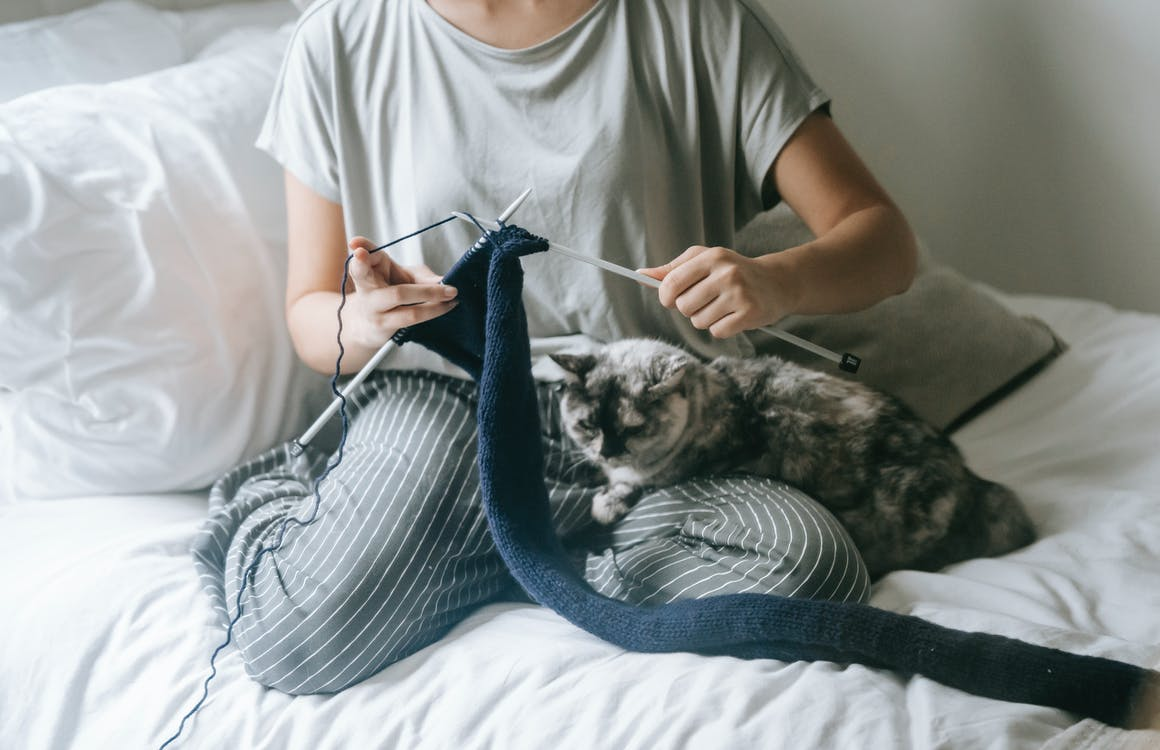 From above of crop faceless lady relaxing on bed with lazy cat and knitting wool sweater during weekend at home