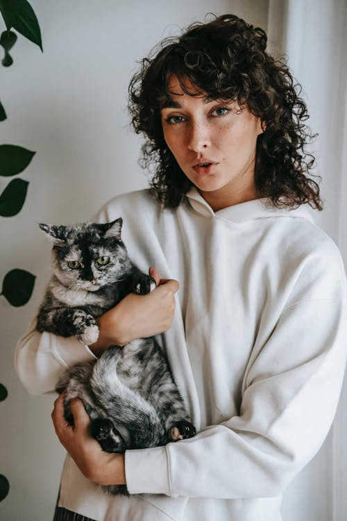 Woman embracing adorable cat at home in daytime